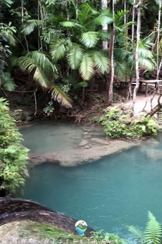 Exploring the waterfalls in the Philippines.... Travel Tips, Travel Destinations, Camping Life, Travel Aesthetic, Adventure Awaits, World Traveler, Waterfalls, Backyard Ideas, Philippines