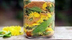 Jitrocelovo-pampeliškový sirup — Recepty — Kouzelné bylinky — Česká televize Herb Garden, Home And Garden, My Secret Garden, Natural Medicine, Pickles, Cucumber, Life Is Good, Detox, Remedies
