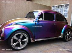 Amazing Bug Paint....Absolutely Amazing!