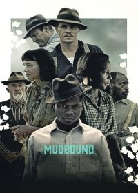 Netflix has debuted a poster and teaser trailer for the acclaimed drama Mudbound. Directed by Dee Rees, the film stars Jason Clarke, Carey Mulligan, Jason Films Netflix, Films Hd, Films Cinema, Hd Movies, Movies To Watch, Movies Online, Movie Tv, Movie Trivia, Movie Tickets