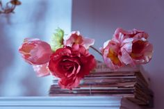 Lovely roses by EliseEnchanted on DeviantArt