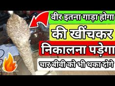 Ayurvedic knowledge Hindi - YouTube Men Health Tips, Natural Health Tips, Gym Workout For Beginners, Gym Workout Tips, Ayurvedic Remedies, Health Remedies, Human Body Facts, Human Body Anatomy, Astrology Chart