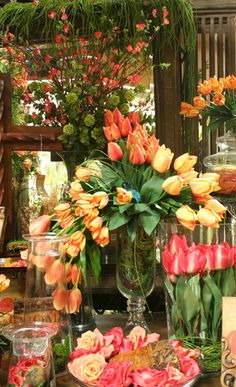 tulips in a Living and Loving Home...