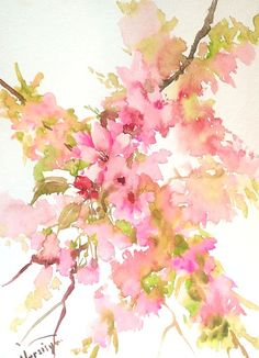 Cherry Blossom Painting, original watercolor painting pink wall art, sakura blassom, 15 X 11 in,