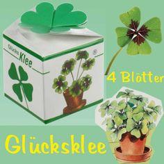 Mini Kleeblatt Mini Glücksklee Vierblättrig Silvester Viel Glück Deko Neujahr
