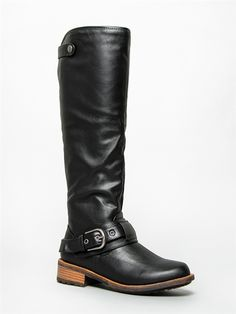 Delura ASHBERRY Buckle Knee High Riding Boot -