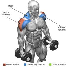 SHOULDERS - STANDING DUMBBELLS LATERAL RAISE