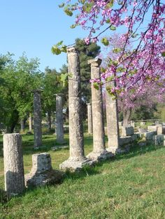Ancient Olympia, Elis region Peloponnese, Greece - the ancient site of the first Olympic Games. Ancient Ruins, Ancient Greece, Dream Vacations, Vacation Spots, Oh The Places You'll Go, Places To Travel, Olympia Greece, Destinations, Greece Travel