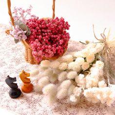 ハルヒツジさんが投稿した画像です。他のハルヒツジさんの画像も見てませんか?|おすすめの観葉植物や花の名前、ガーデニング雑貨が見つかる!🍀GreenSnap(グリーンスナップ)