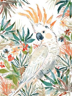 Clem the citron-crested cockatoo is all about working her angles TO THE LIMIT. The best light is natural light, she believes. Bird Artwork, Watercolor Artwork, Watercolor Animals, Kunst Inspo, Art Inspo, Art And Illustration, Happy Paintings, Cockatoo, Wildlife Art