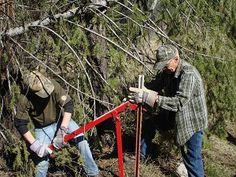 Pulling Fence in Idaho