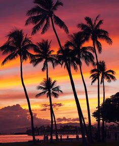 Waikiki beach sunset last night