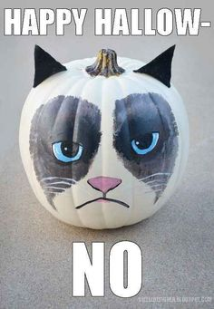 Grumpy Cat Pumpkin | 39 Outside-The-Box Pumpkin Ideas