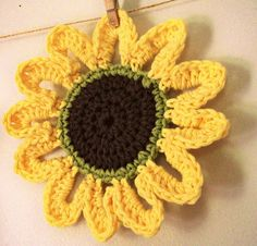another sunflower!