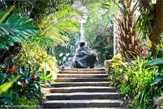 La Mortella Gardens - Ischia Review.com