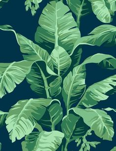 Pacifico Palm by Nathan Turner - Indigo