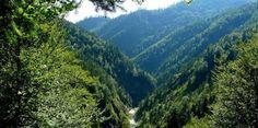 Forsthütte Valepp 26. Juli 2014