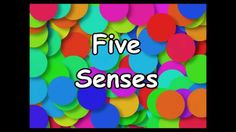 This fun and catchy sing-a-long song teaches kids the five senses. Visit…