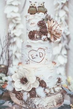 Birch tree wedding cake for a rustic fall or winter wedding with an owl cake topper.
