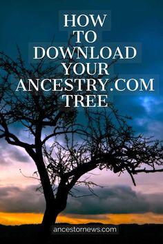 My history 😇 Family Tree Research, Family Tree Chart, Family Trees, Free Genealogy Sites, Family Genealogy, Genealogy Search, Genealogy Forms, Ancestry Tree, Genealogy Organization