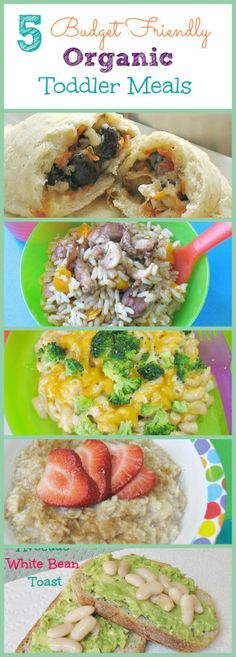5 Budget Friendly Organic Toddler Meals www. Toddler Menu, Toddler Snacks, Daycare Meals, Kids Meals, Healthy Lunches For Kids, Healthy Eating, Meal Plan For Toddlers, Baby Food Recipes, Healthy Recipes