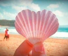 I hope I can find a heart-shaped sea shell the next time I go to the beach. The Beach, Summer Beach, Summer Vibes, Beach Bum, Pink Beach, Pink Sand, Summer Breeze, Tumblr Soft, I Need Vitamin Sea