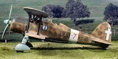 """El último de los grandes cazas biplanos para entrar en servicio en 1938, el Fiat CR.42 """"Falco"""" (Falcon) se convirtió en el único luchador italiano más producido.  Ágil, luz, y considerado por los pilotos Regia Aeronautica como un avión maravilloso para volar, el Falco fue irónicamente demasiado poco, demasiado tarde.  Diseñado para la aeronáutica combate convirtiendo rápidamente superados por los combatientes de poca altura monoplano como el Messerschmitt Bf 109 y hasta el Fiat G.50 Freccia…"""