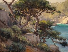Old Cypress by Brian Blood Oil ~ 12 x 16 Beautiful Landscape Paintings, Ocean Paintings, Oil Paintings, Blood Art, Sunset Sea, Ocean Scenes, Scratchboard, Painting Process, Outdoor Art