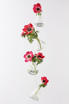 Pretty hanging vases. Swoon. From Anthropologie.com