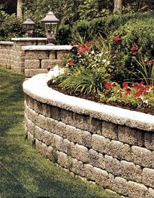 image: landscaping plants