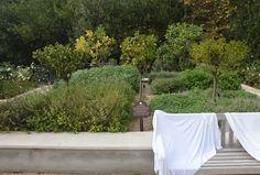 Venkovni bylinkova zahradka