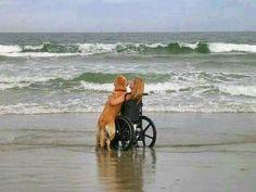 A Human's Best Friend..