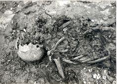@Scheepswrakken: #collectievissen #eng Soms worden bij een wrak menselijke resten gevonden, zoals het skelet in De Lutina.http://bit.ly/GWsVfM by industrieelerfgoed, via Flickr