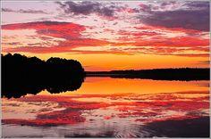 Lake Warren State Park in Hampton County. #SCLowcountry