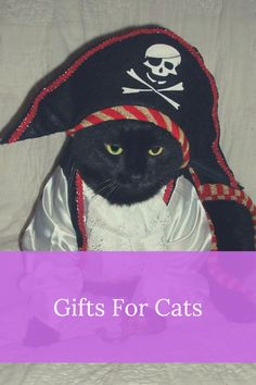 Gifts For Cats Cat Gifts, Pirates, Gift Ideas, Cats, Gatos, Kitty, Cat, Cat Breeds, Kitty Cats