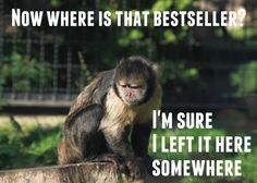 Monkey looking for the bestseller he wrote