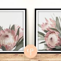 A4 SIZE 3 Print Floral Collection prints of original | Etsy A3 Size, Black Backgrounds, A4, The Originals, Digital, Drawings, Floral, Prints, Poster
