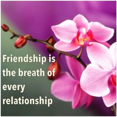 Wishes, Messages, Greetings....: Friendship