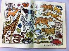 Imagiers : Presque tout et zoologique de Joelle Jolivet