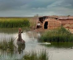 Iraqi Marshes in south of Iraq Traveller's Tales, Ancient Mesopotamia, Iranian Art, Organic Architecture, Baghdad, World Cultures, Amazing Photography, Beautiful Places, Landscape