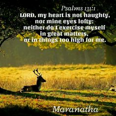 #Psalms 131:1-3 (KJV) LORD, my heart is not haughty, nor mine eyes lofty: neither do I exercise myself in great matters, or in things too high for me. Surely I have behaved and quieted myself, as a child that is weaned of his mother: my soul is even as a weaned child. Let Israel hope in the LORD from henceforth and for ever. #MARANATHA