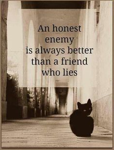 I might be able to develop a friendship with an honest enemy. But I can never have a friendship with a narcissist because they would rather hear lies than deal with the uncomfortable truth.