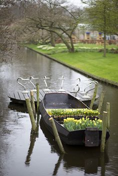 Beautiful Holland http://www.travelandtransitions.com/destinations/destination-advice/europe/