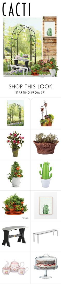 """""""Cacti n Succulant"""" by mocimoca ❤ liked on Polyvore featuring interior, interiors, interior design, home, home decor, interior decorating, Sunjoy, Grandin Road, Thos. Baker and Potting Shed Creations"""