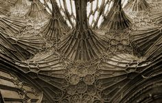 Gloucester Cathedral, England or an alien nest? Cathedral Architecture, Sacred Architecture, Beautiful Architecture, Beautiful Buildings, Architecture Details, Ribbed Vault, Gloucester Cathedral, The Cloisters, Castle House