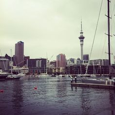 #auckland #nz #skytower #city #skyline #harbour #cityofsails #yachts
