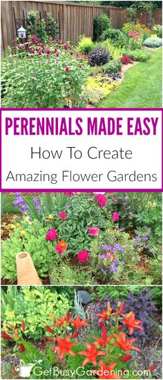 Boring flower gardens are a common problem. Learn how to avoid (or fix) dull, boring gardens, and create eye-popping perennial flower gardens that are colorful all year long. Mixing perennials that bloom at different times with colorful foliage will lead to amazing perennial flower gardens - and perennials made easy!