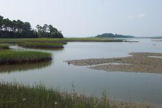 Eastern Shore Marsh