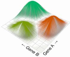 article about genetic algorithms from grasshopper