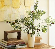 Faux Olive Branch | For the guest room?